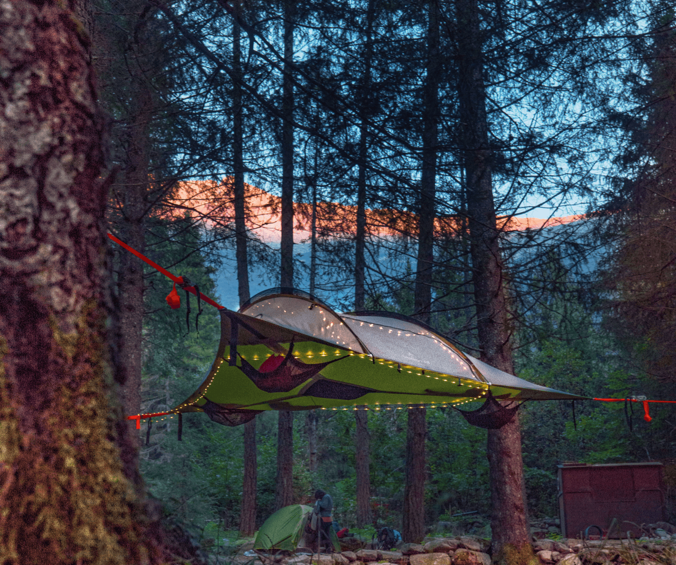 Tent in the trees