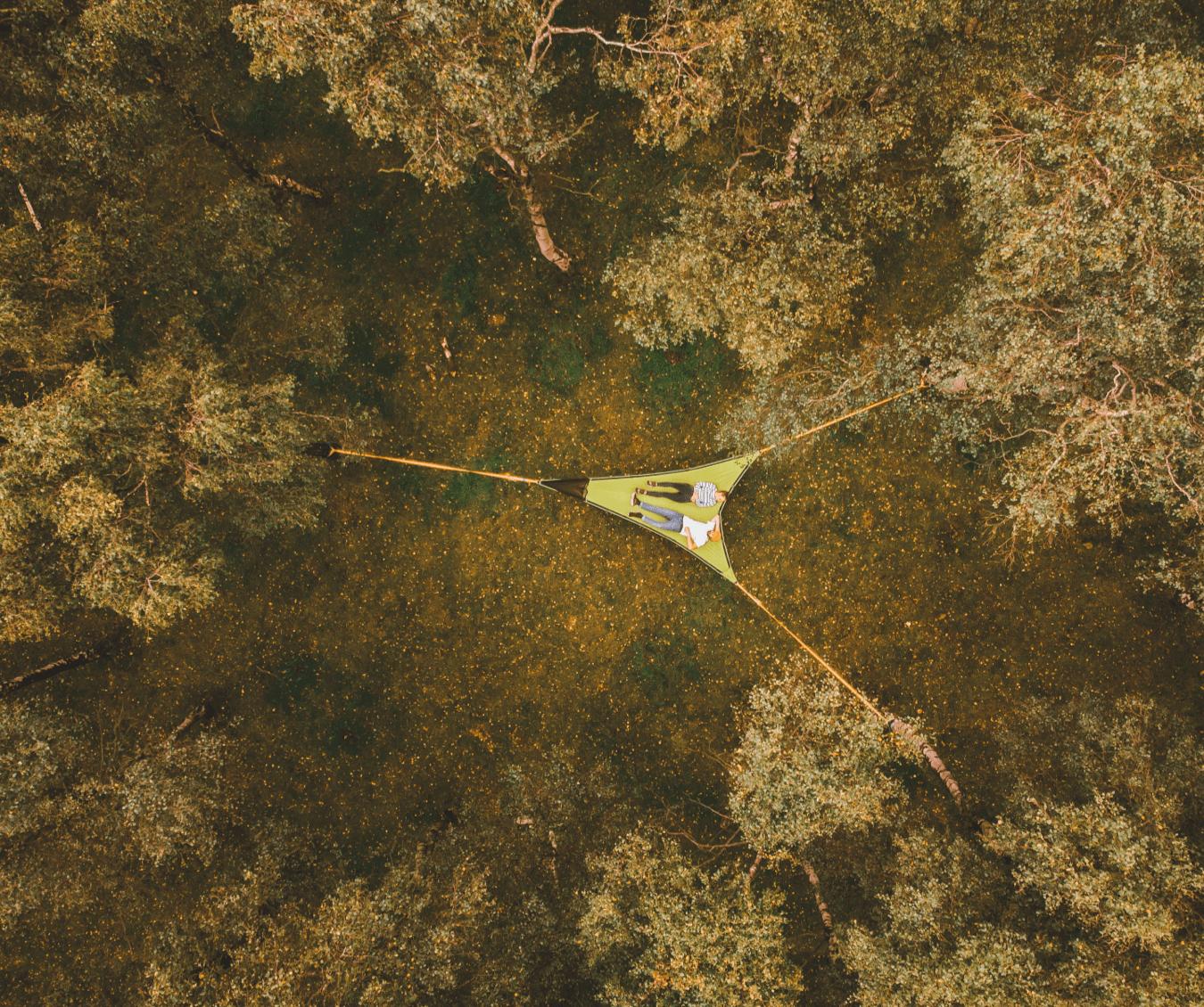Hammock from above